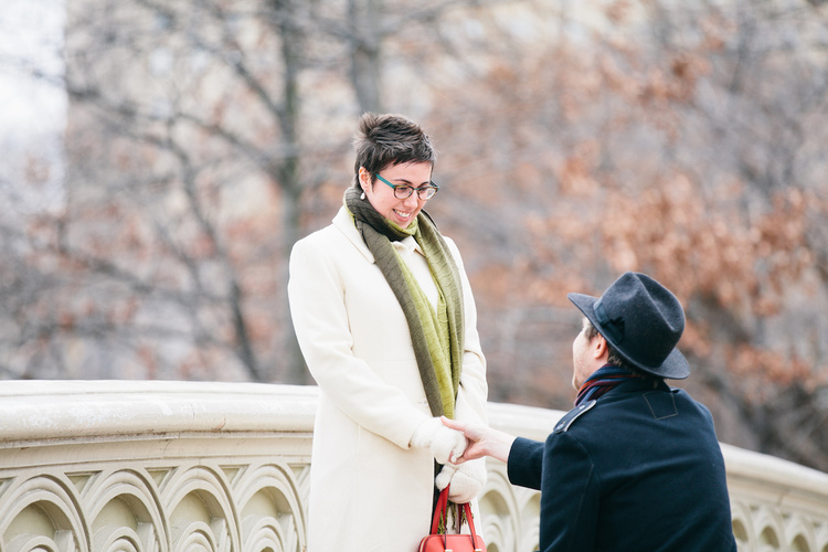 Special Proposal on Bow Bridge | New York City