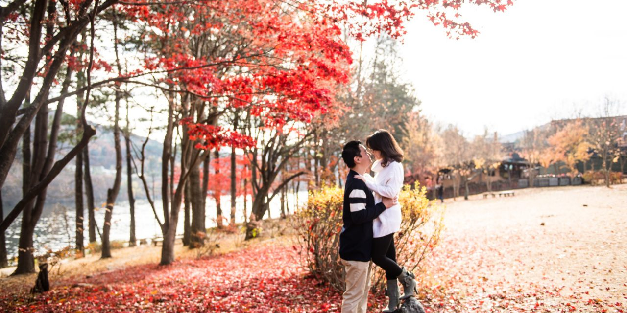 Love Among the Leaves in Seoul