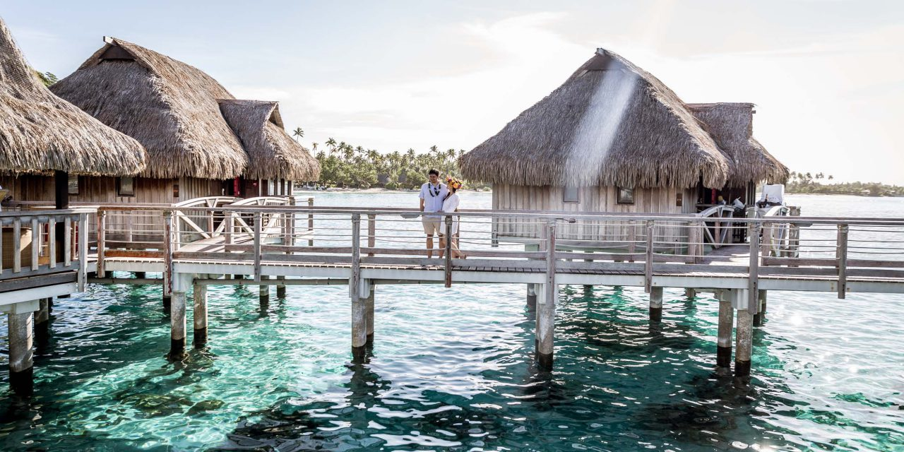 Why You Should Book a Ticket to Mo'orea
