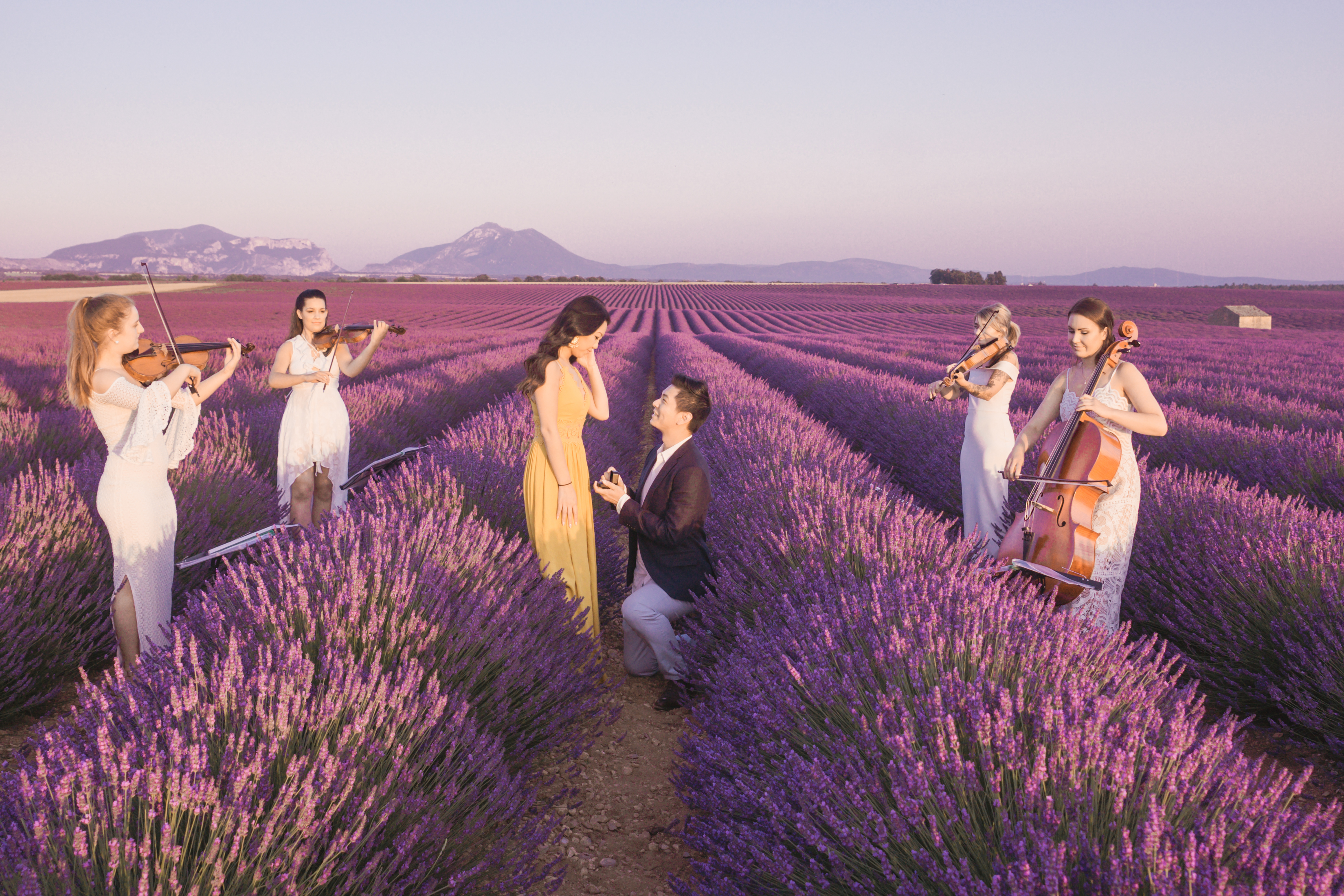 A Proposal in the Lavender Fields of Provence that is Sure to Blow your Mind